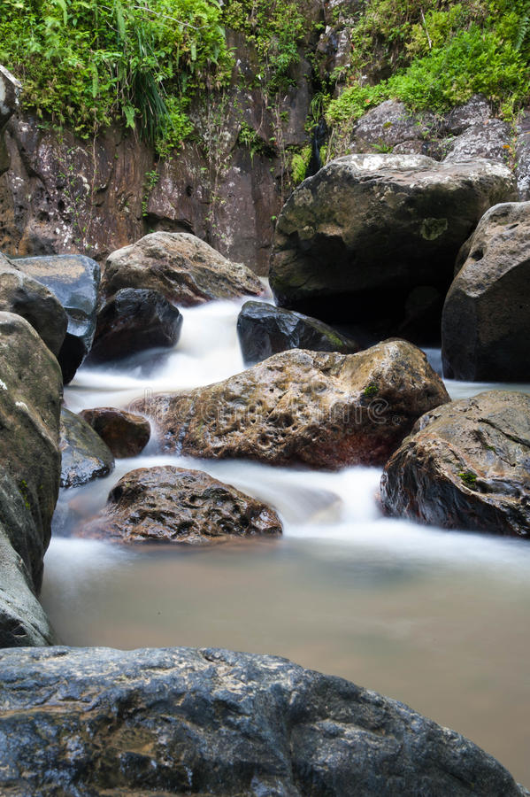 山小河在波多黎各 免版税图库摄影