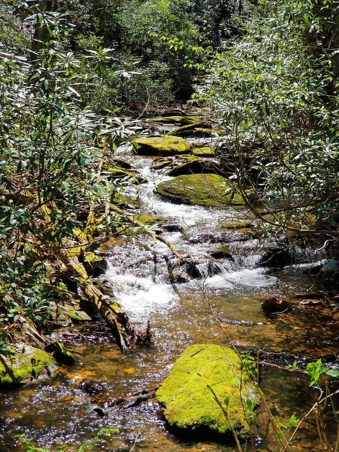 山小河在阿巴拉契亚山脉,北卡罗来纳 图库摄影