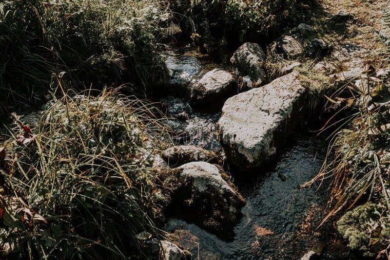 山小河,在岩石的春天 免版税库存图片