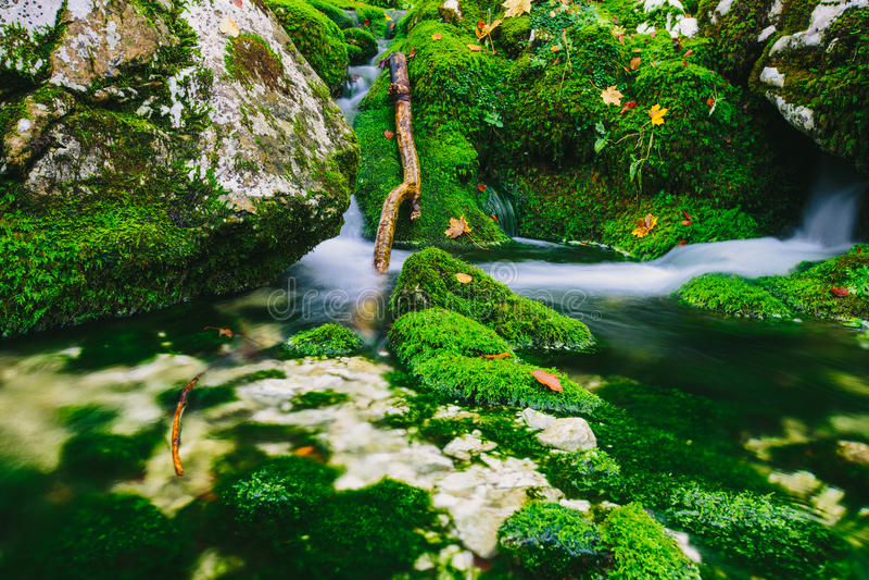 山小河细节用生苔岩石和透明的水 免版税库存照片