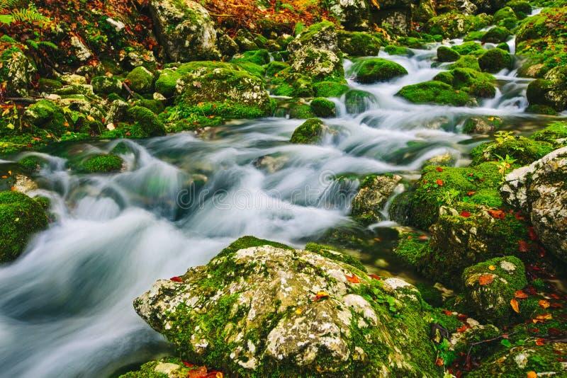 山小河细节用生苔岩石和透明的水 库存照片
