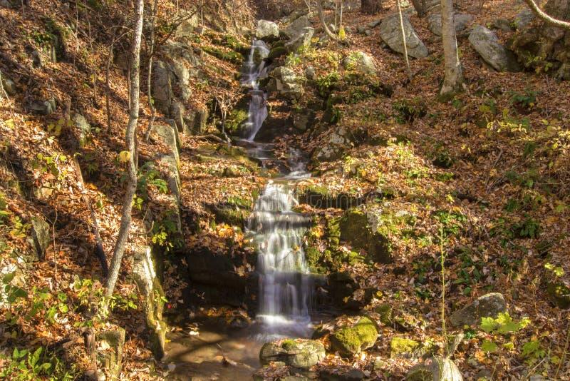 山小瀑布瀑布 库存照片