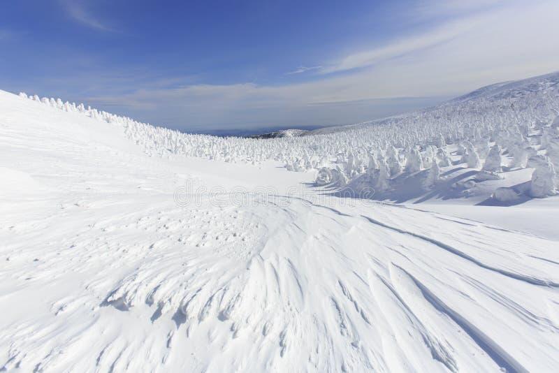 山形县皂市Onsen滑雪胜地 库存图片