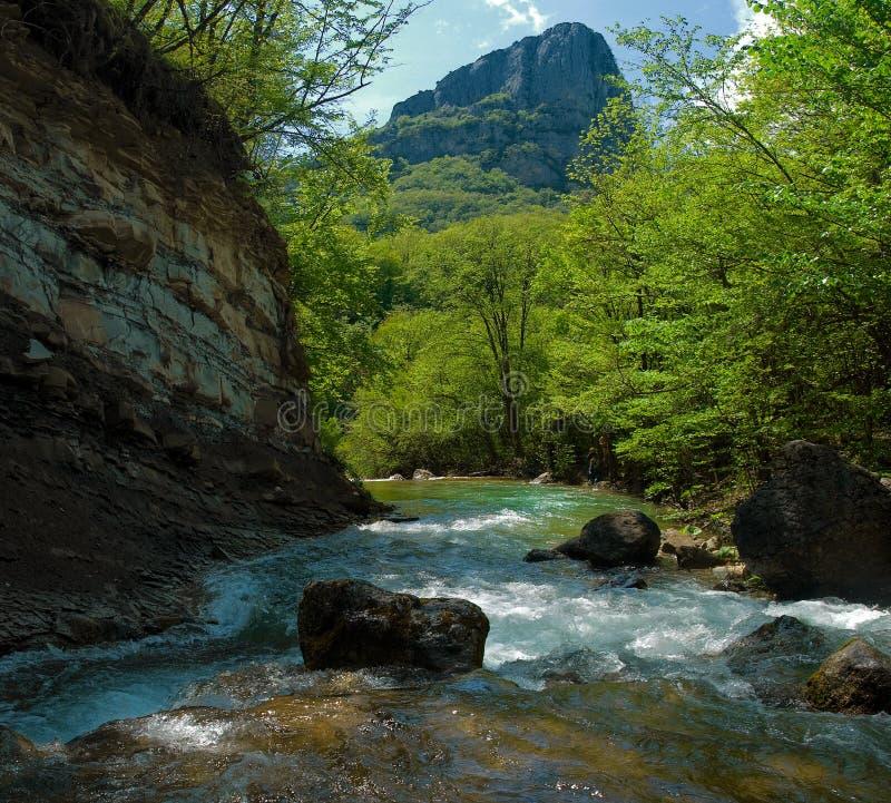 山急流河 库存图片