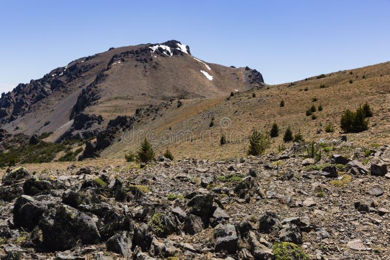 山景、岩石、树和雪 图库摄影