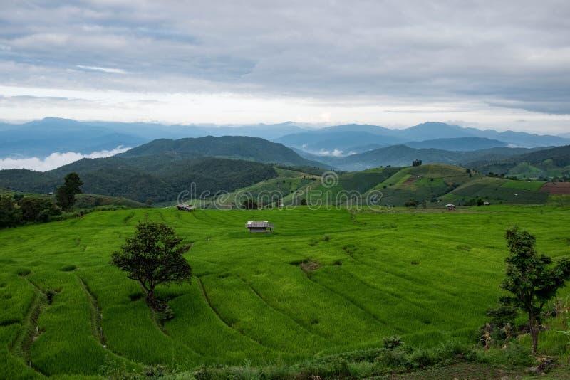 山景,美好的风景 库存图片