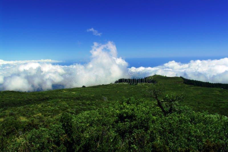 Download 山景 库存照片. 图片 包括有 天堂, 云彩, 地产, 展望期, 理想, 结构树, 掌上型计算机, 蓝色, 天空 - 184440