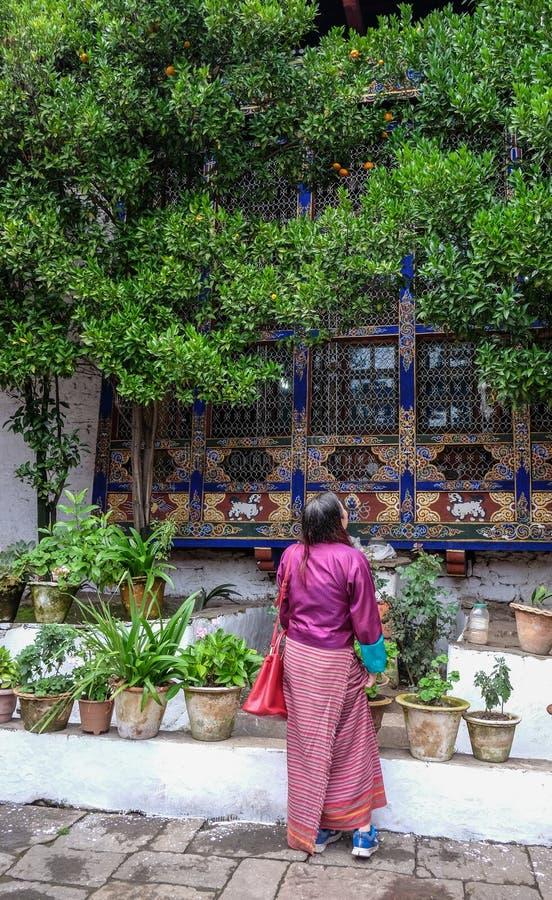 山村在廷布,不丹 库存照片
