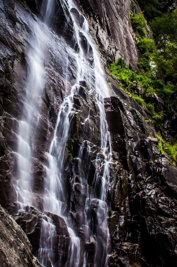 山核桃属在烟囱岩石国家公园落, 免版税库存图片