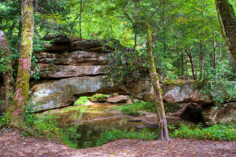 山森林和自然石桥梁。 库存图片