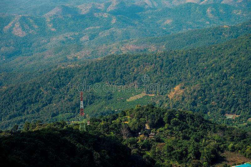 山森林狡猾的lanscape 图库摄影