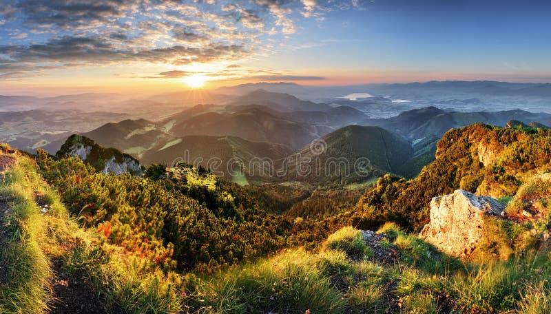 山森林风景在与云彩的晚上天空下在sunli 免版税库存照片