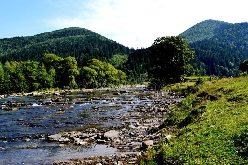 山横向在夏天 免版税库存图片