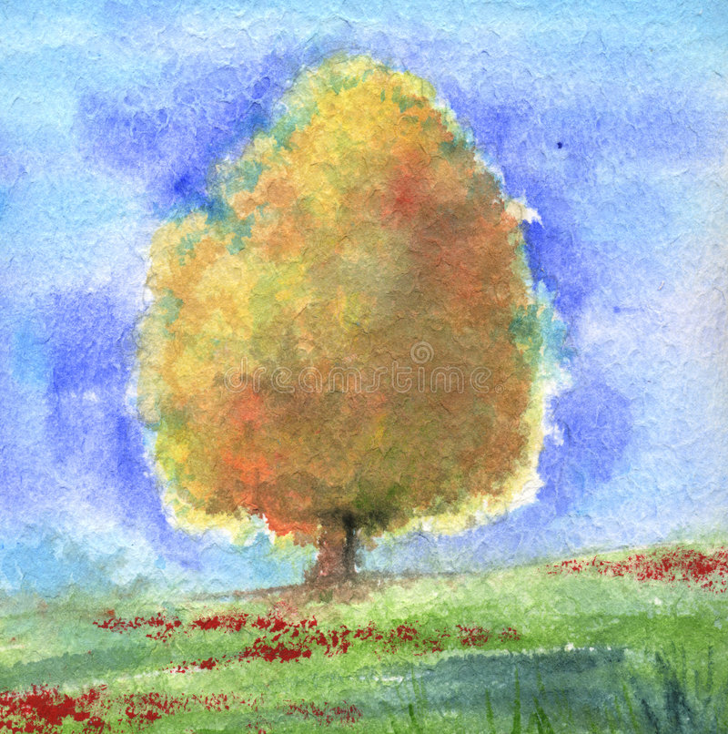 山毛榉树水彩 向量例证