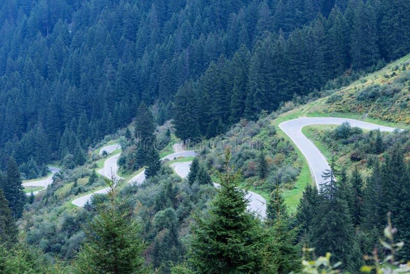 山河和树风景自然环境 阿尔卑斯高涨 色的小山,大山 库存照片
