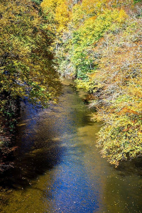 山河和秋叶在西部N的阿巴拉契亚人 库存图片