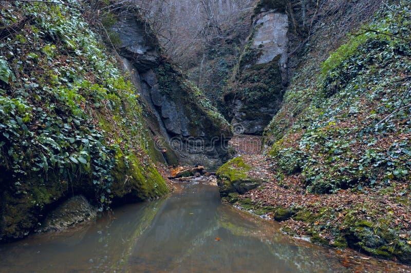 山河在峡谷 库存图片