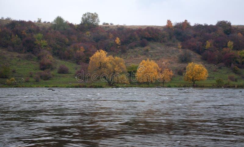 山河平原草甸五颜六色的春天风景蓝天N 库存照片
