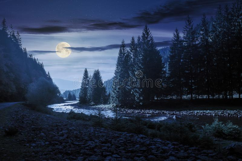 山河绕通过森林在晚上 免版税库存图片