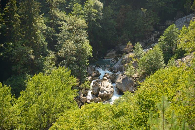山河Gega在阿布哈兹,高加索 免版税图库摄影