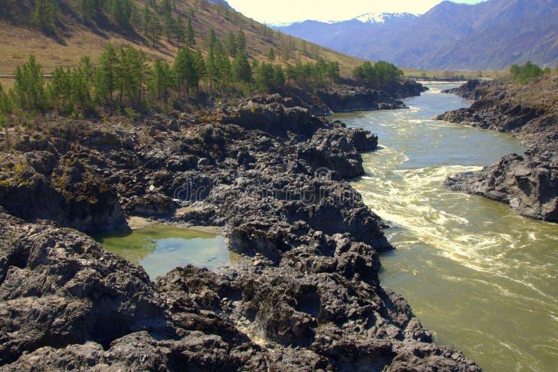 山河Katun的岩石河岸 r ?? 免版税库存图片