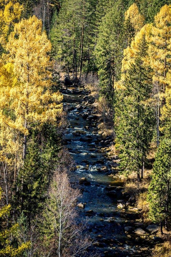 山河Olkha的看法 库存图片