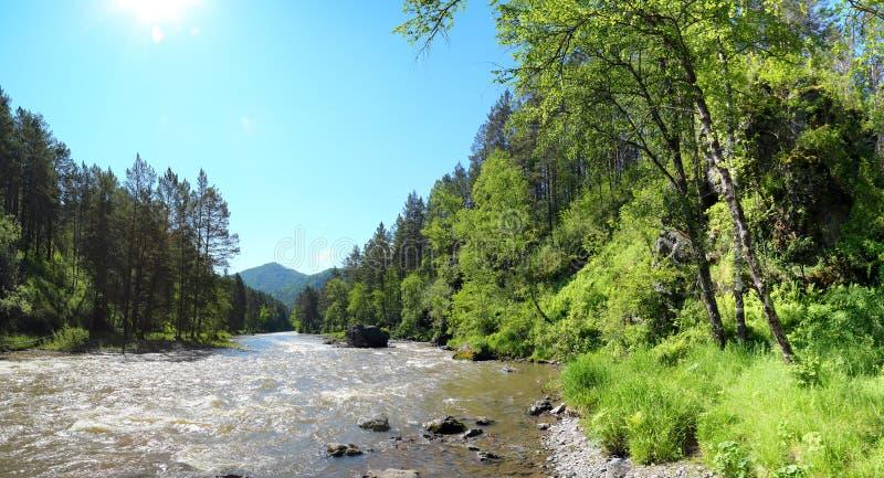 山河Sema风景在阿尔泰 图库摄影