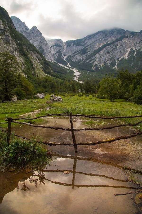 山河Tolminka,托尔明,斯洛文尼亚的春天 库存图片