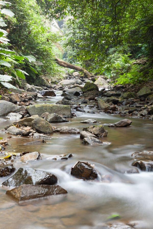 从山流动下来的瀑布 库存图片