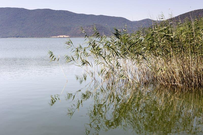 山湖的全景 免版税库存图片