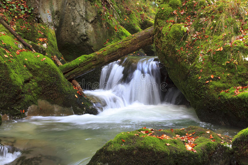 山瀑布。快速的小河水 免版税库存图片