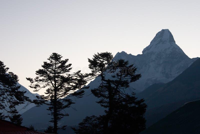 山现出轮廓日出结构树 库存照片