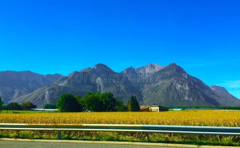 山瑞士 在瑞士阿尔卑斯山脉的美好的风景 假期和旅行到山 免版税库存照片