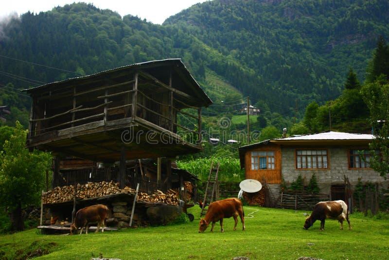 山的一个村庄 免版税库存图片