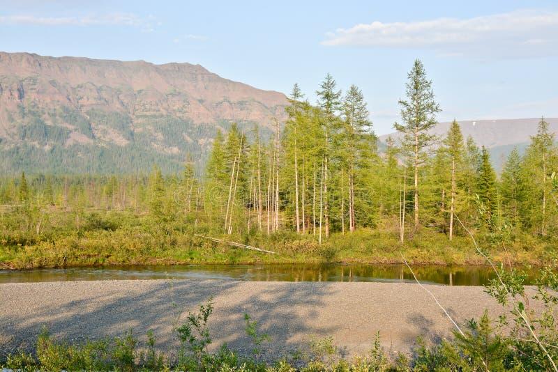 山的倾斜在Putorana高原的 免版税图库摄影