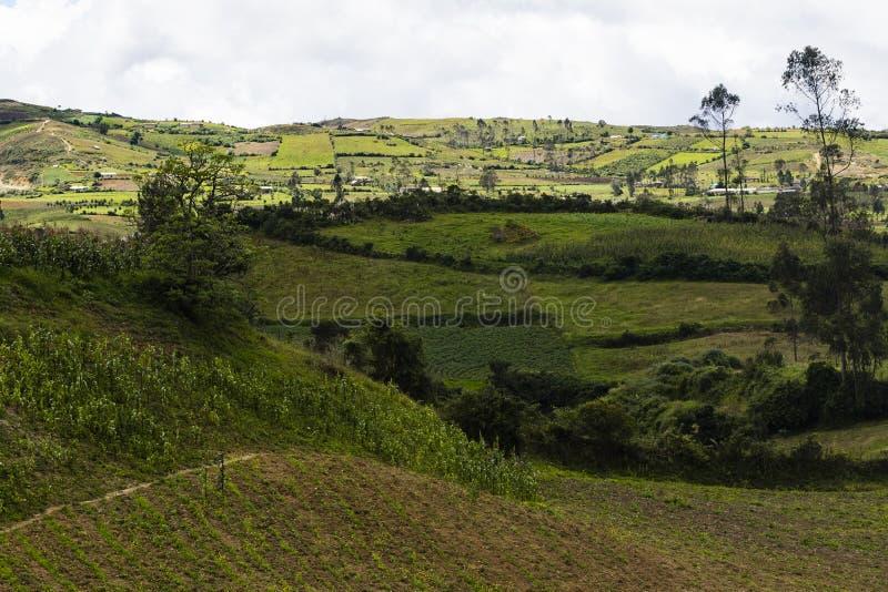 绵延山的农业草甸 免版税图库摄影