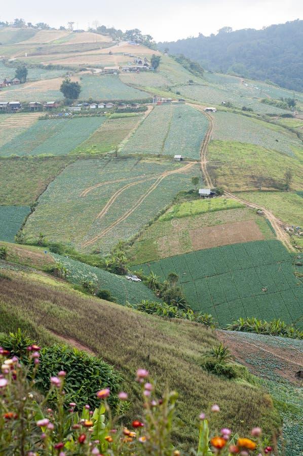 山的农田,山的村庄 nat 免版税图库摄影