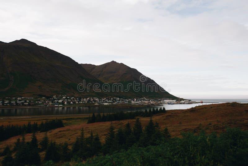 山的冰岛小村庄 库存照片