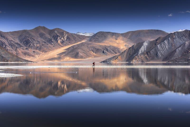 山的反射在Pangong湖的有蓝天背景 Leh, Ladakh,印度 库存图片