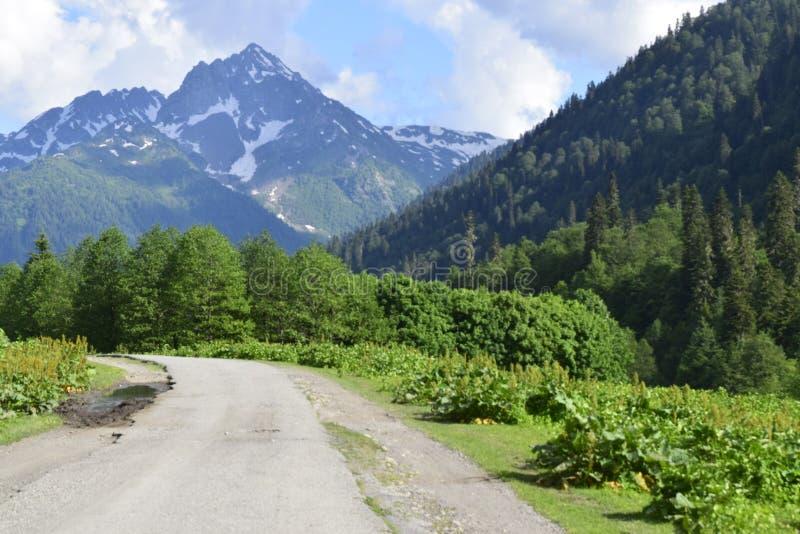 山的壮观的风景 库存照片