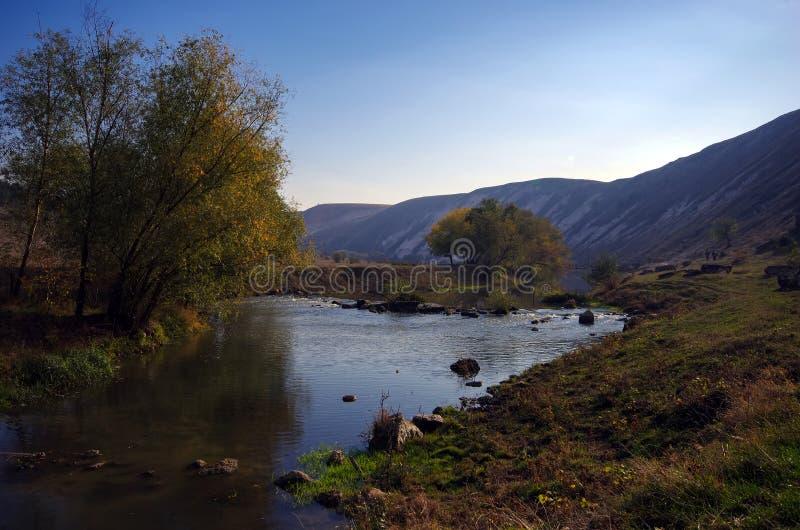 山的小河 库存图片