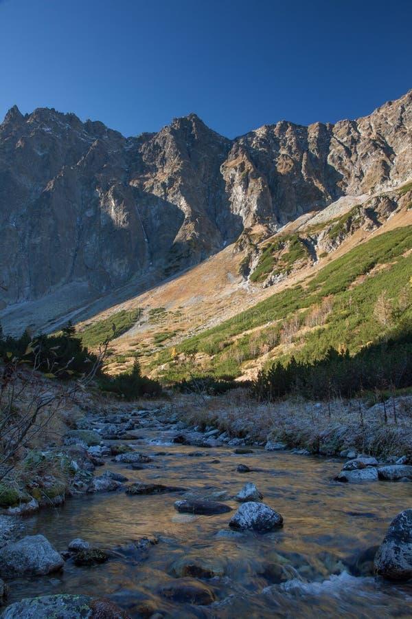 山的河与在背景的岩石峰顶 免版税库存图片