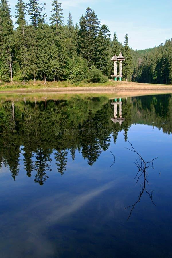 山的湖 Synevir国立公园视图 树的反射在水中 免版税图库摄影