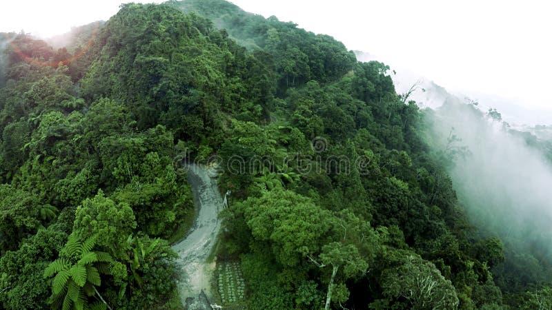 山的空中密林雨林 免版税库存图片