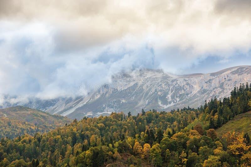 山的美丽的森林在秋天 免版税库存照片
