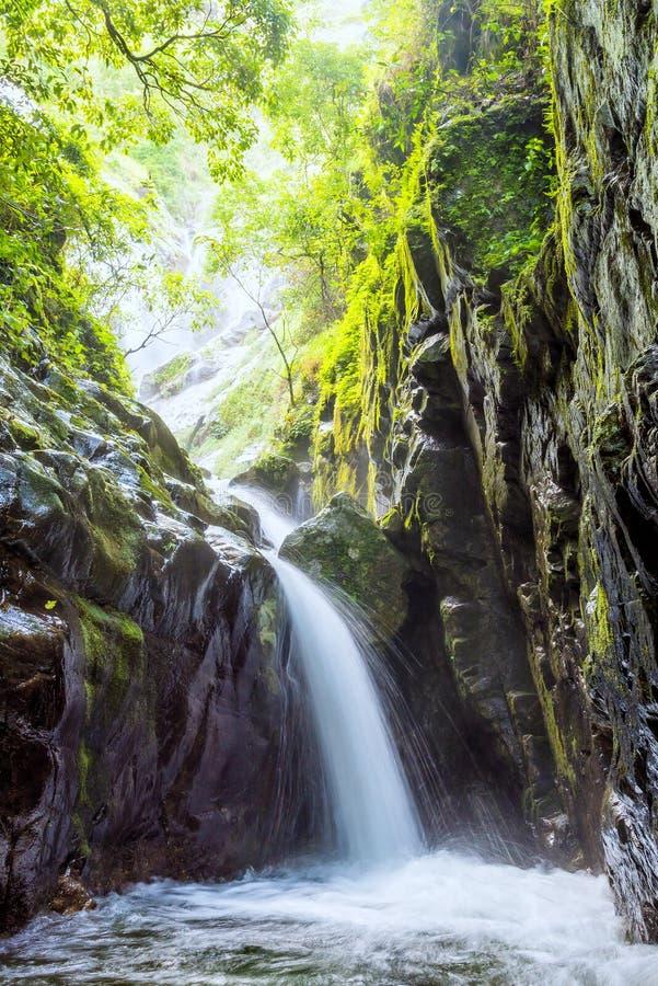 从山的美丽的瀑布在雨林Umpang,泰国里 免版税库存图片