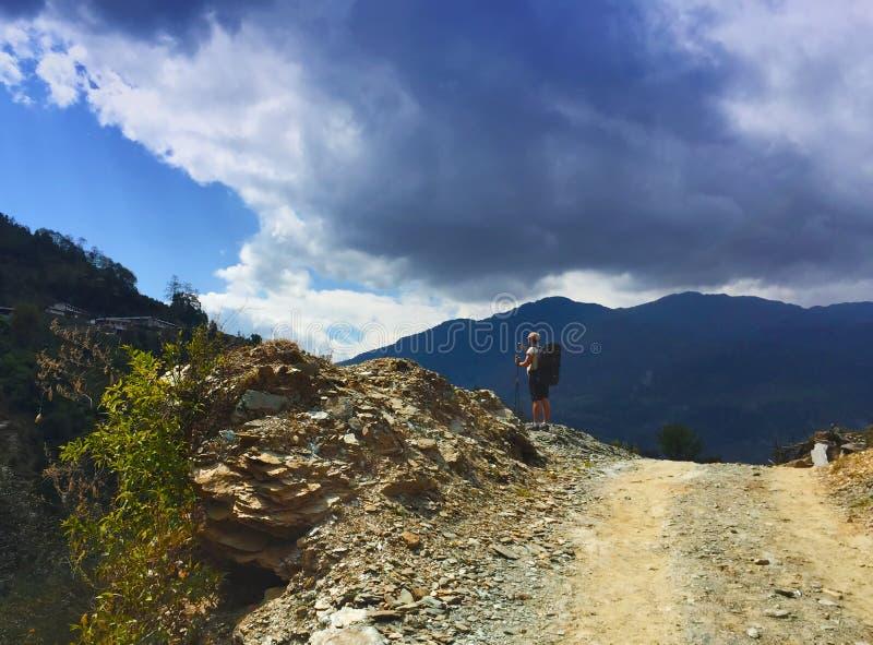 山的老牛,背包徒步旅行者步行在喜马拉雅山的,对安纳布尔纳峰营地的艰苦跋涉 免版税库存图片