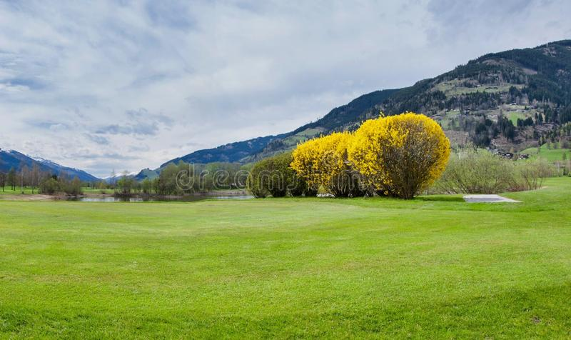 Download 山的高尔夫球场 库存图片. 图片 包括有 横向, 比赛, 路线, 业余爱好, 驱动, 生活方式, 节假日 - 72356193