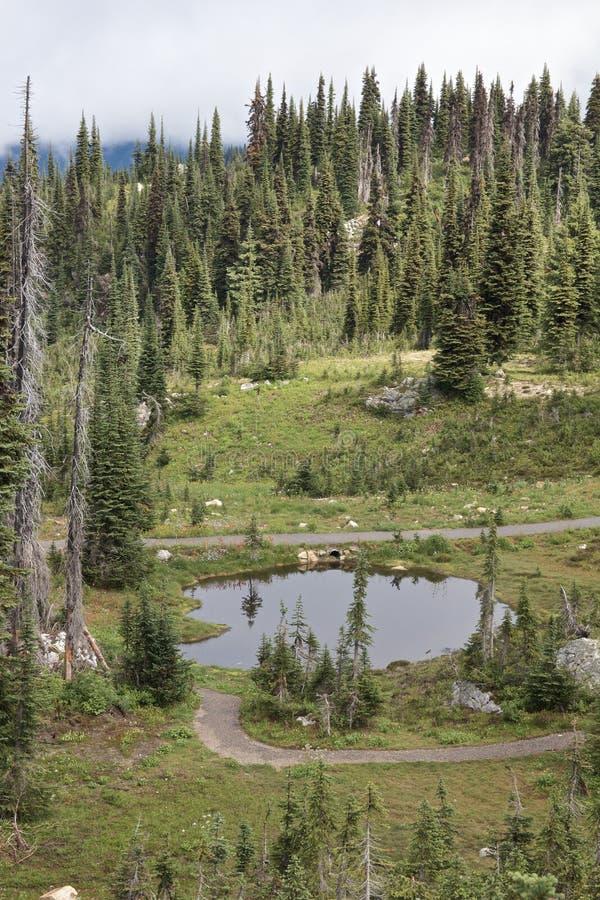 山的1池塘 免版税库存图片