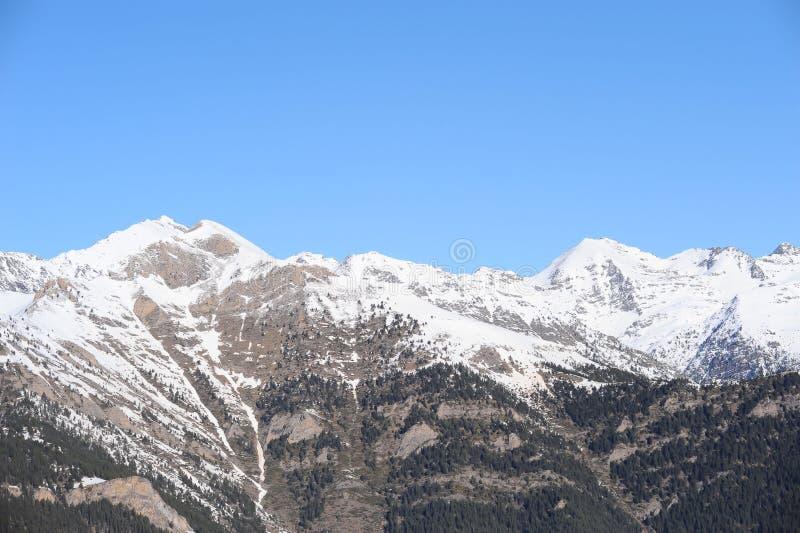 山盖用雪和长满与云杉-安道尔,比利牛斯,欧洲的公国 库存照片